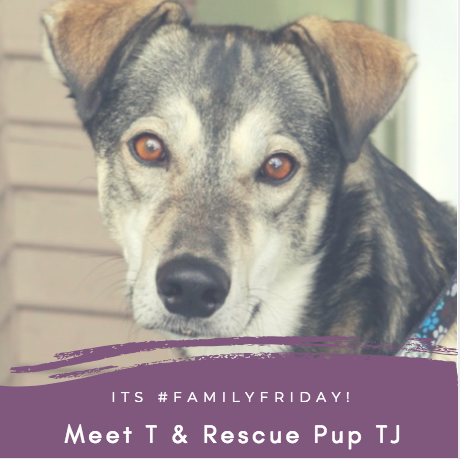 Meet your Neighbour T & Rescue Pup TJ!